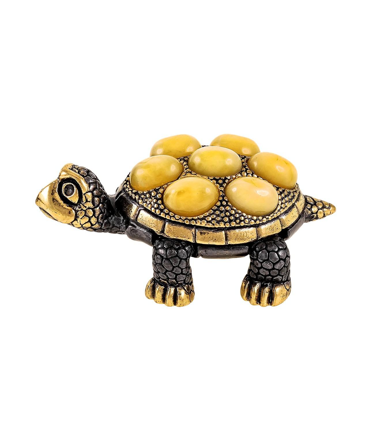 Черепаха  Живчик 1897