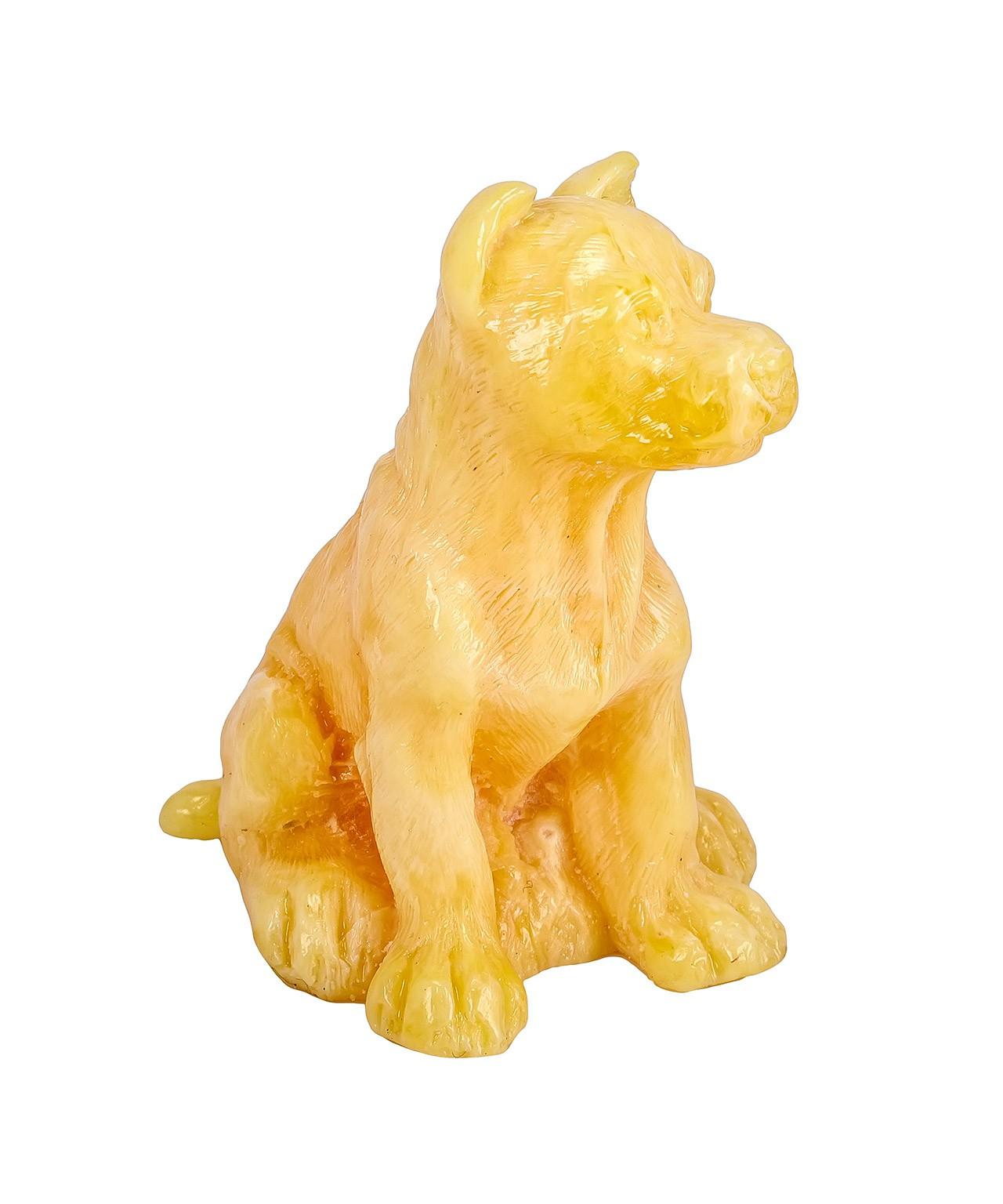 Собака Бойцовская Янтарная 660