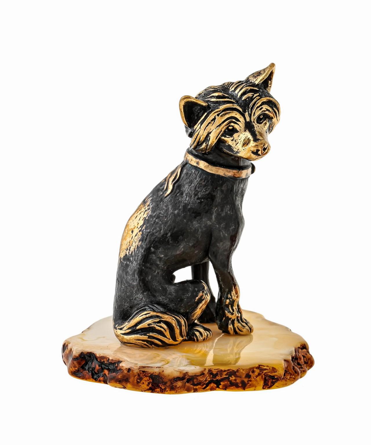 Собака Китайская Хохлатая 1496
