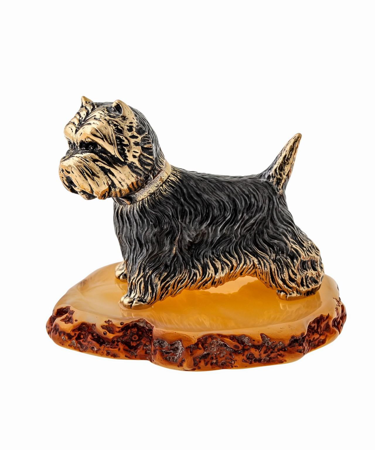 Собака Вест-хайленд-уайт терьер 1497