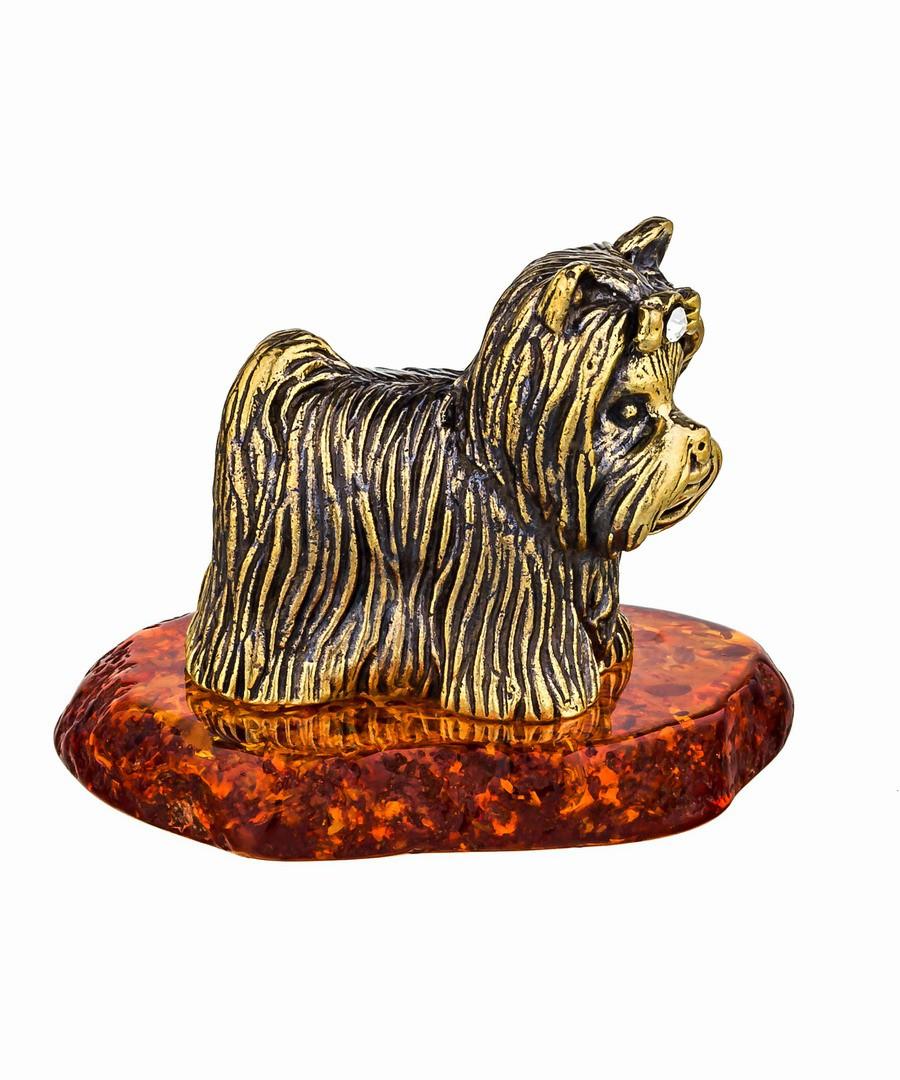 Собака Йорк-Бивер 750