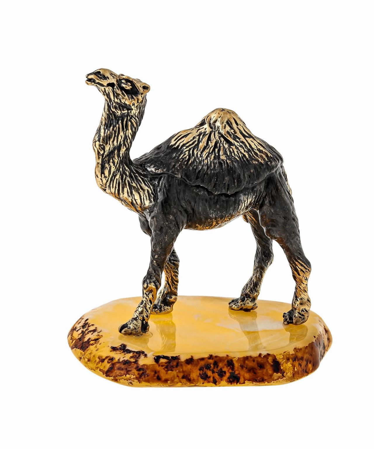 Верблюд в пустыне 1595